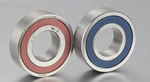 760 series Ball screw support bearing